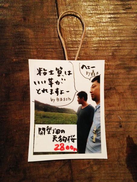 kaikontenguzakura.jpg