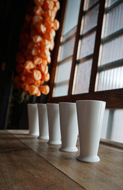 koyoidogahakukoppu1ss.jpg